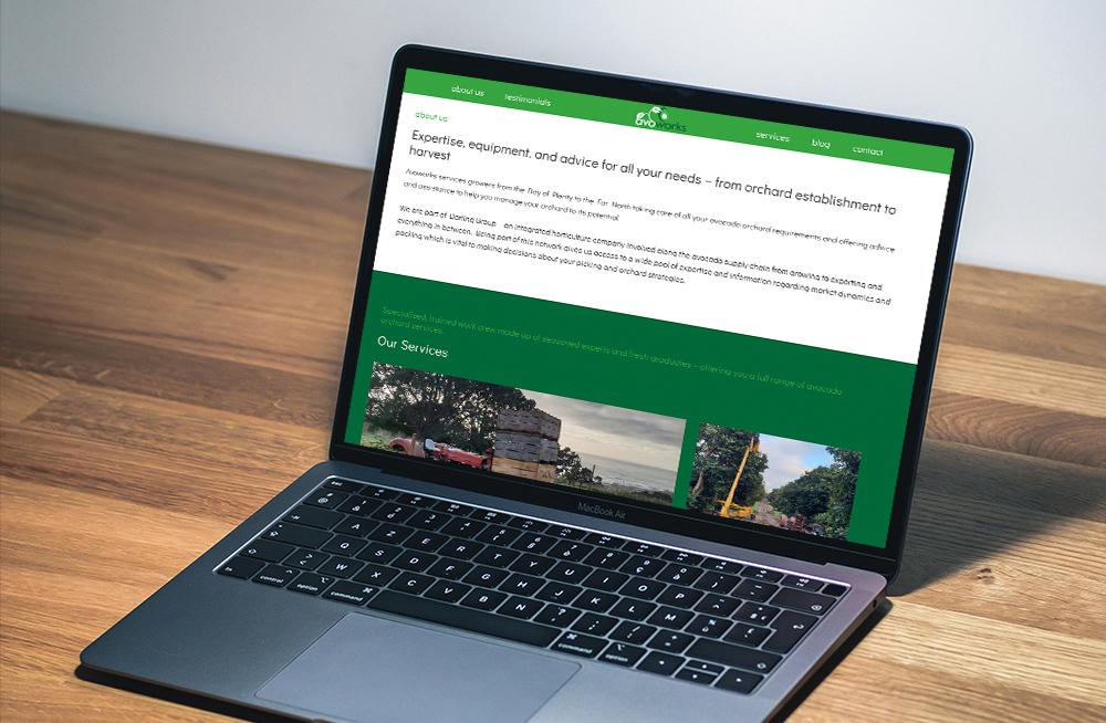 Responsive, Tauranga digital design agency. Client project  - Avoworks, Website design & development, Web hosting, website our services on laptop